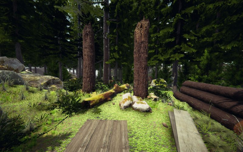 190110_VIrtualForest_001